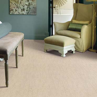 Caress Carpet by Shaw | Neosho, MO