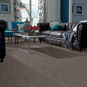 Anso® Nylon Carpet | Neosho, MO